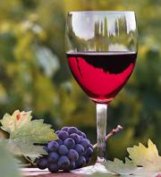 Macedonian-wine