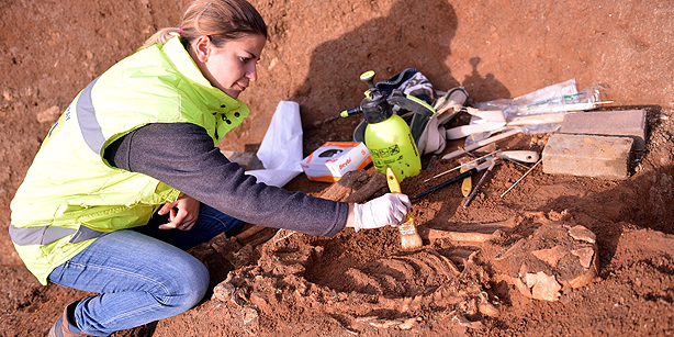 An archeologist examines a human skeleton found during construction in İstanbul. (Photo: AA, Şebnem Coşkun)