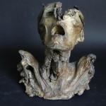 specimen-front-