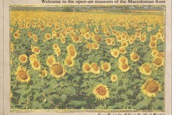 WW1_Macedonia_conference_2015_promo_sunfields