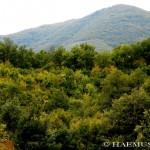 Jakupica Mount Village Tour 26